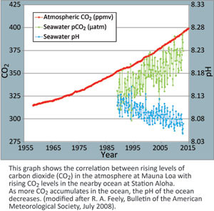 Ph levels change with CO2 levels