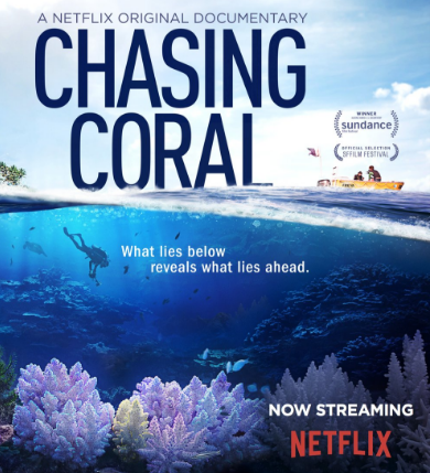 Chasing Coral Film Review